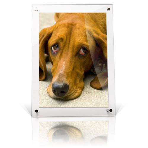 A5 acrylic desktop free standing frame