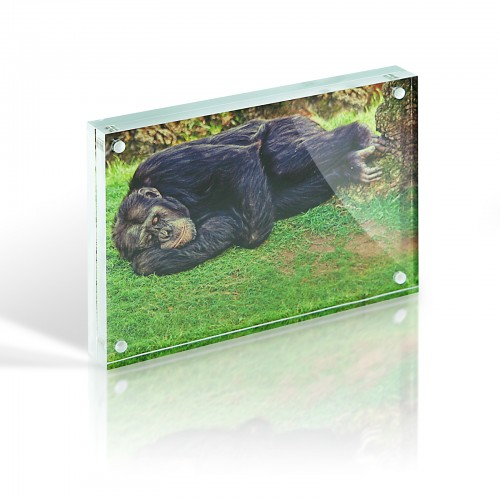 A6 Magnetic Photo Block