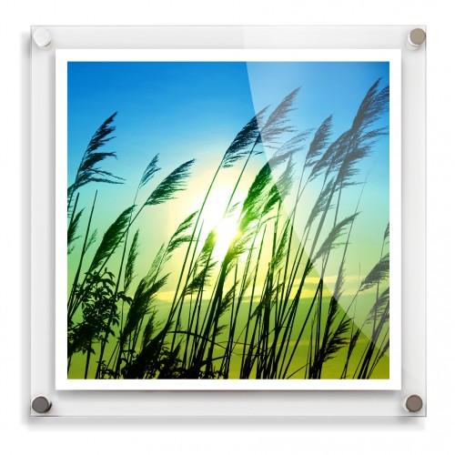 20x20 acrylic wall frame
